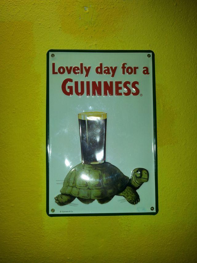 Bierglas Guinness und Schildkröte