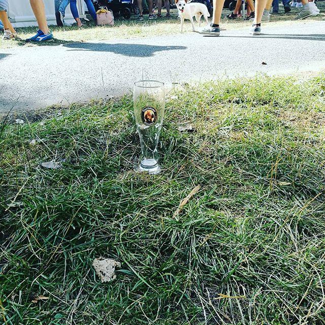 #franziskaner #bierglas beim #maschseefest - auf der Kinderwiese lol
